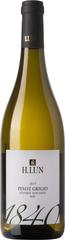 H. Lun 1840 Pinot Grigio Alto Adige DOC
