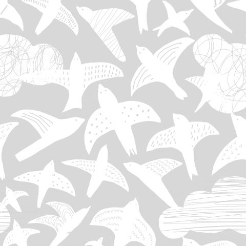 птицы монохром