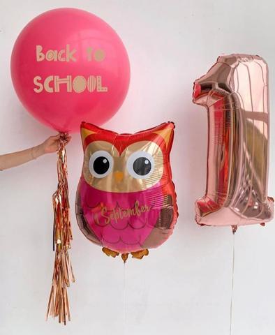 Сет Back to school Сова