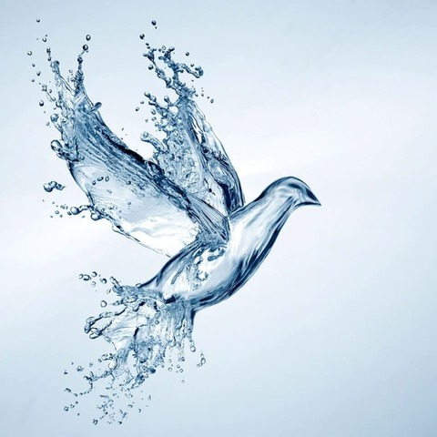 Аква 05 Птица