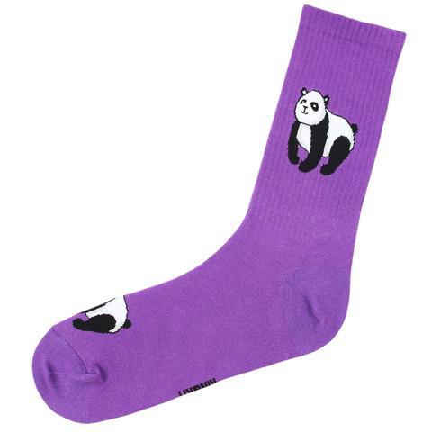 Панда спорт