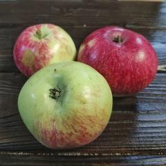 Яблоки с кислинкой (1 кг)