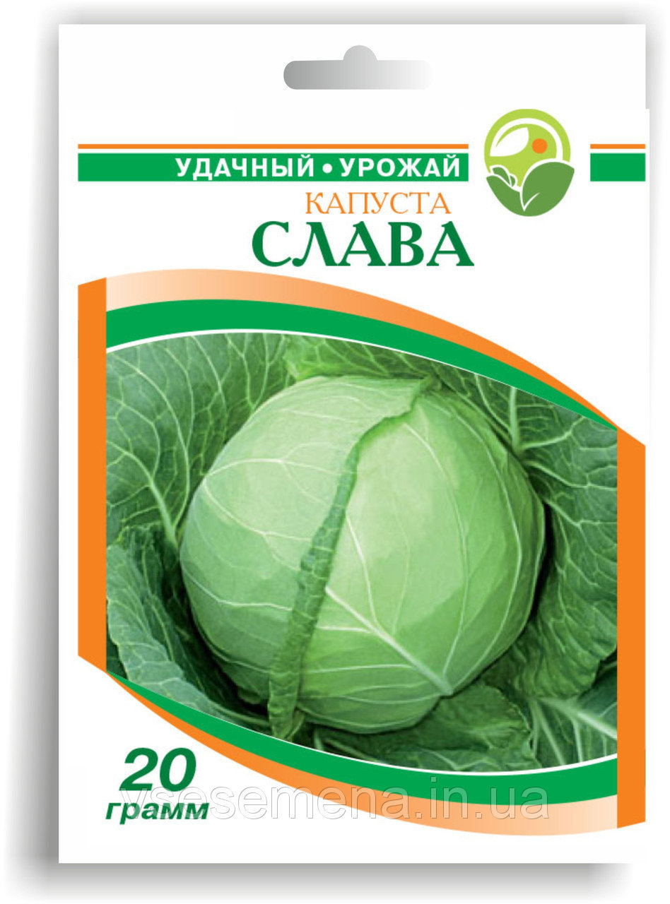 Семена капусты белокачанной 'Слава' - 20 г.