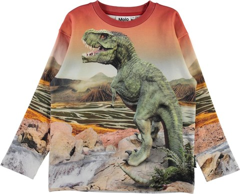 Molo Mountoo Dino Landscape свитшот для мальчика