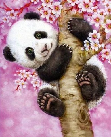 Картина раскраска по номерам 30x40 Панда на цветущем дереве