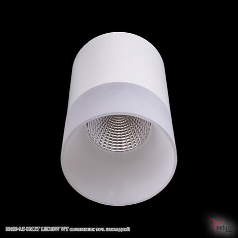 30410-9.5-001RT LED10W WT светильник точ. накладной
