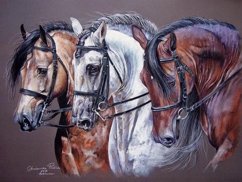 Алмазная Мозаика 40x50 Лошади трех цветов