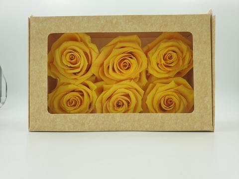 Стабилизированный Бутон Розы Optimum Flowers Standart . Цвет Желтые (Диаметр 7см)