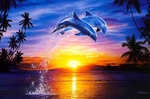 Картина раскраска по номерам 30x40 Прыжок дельфинов на закате
