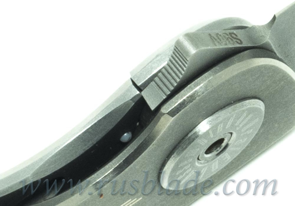 PicnicLight S90V BBQ by Ponomarev Knives