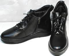 Стильные женские ботинки Evromoda 375-1019 SA Black