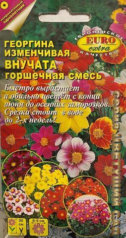 Семена Георгина Внучата горшечная смесь