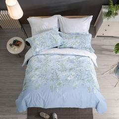 Сатиновое постельное бельё  1,5 спальное Сайлид  В-195