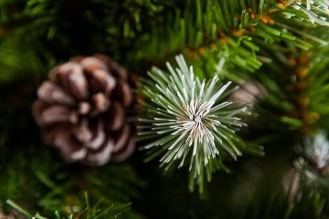 Искусственная елка Императрица с шишками 60 см в мешочке заснеженная
