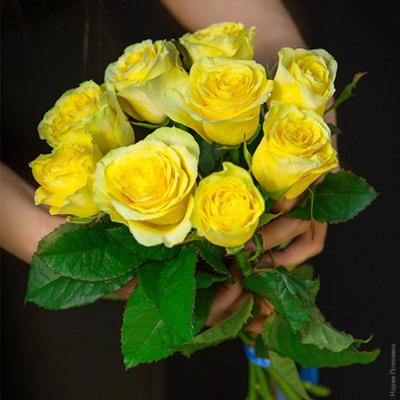 Букет 9 желтых роз Пенни Лейн