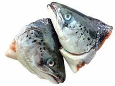 Голова лосося, мороженная, 1кг