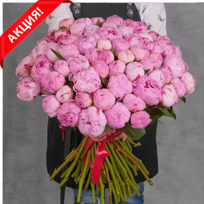 Купить огромный букет 61 розовый пион Сара Бернар
