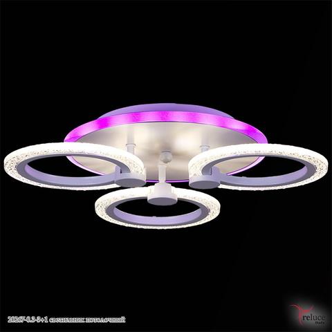 20267-0.3-3+1 светильник потолочный