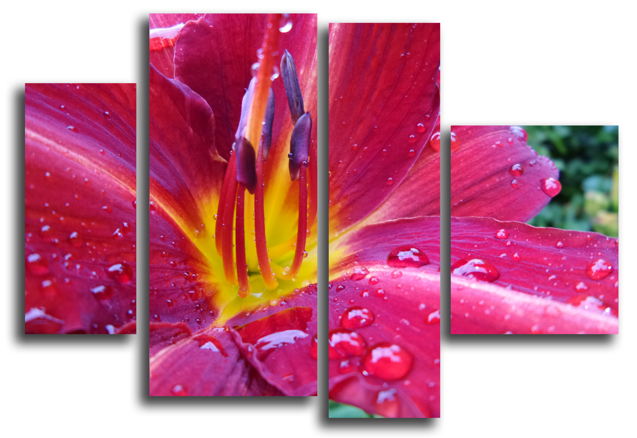 "Цветы Модульная картина ""Аленький цветочек"" М1052_M_загибы_90х67.png"