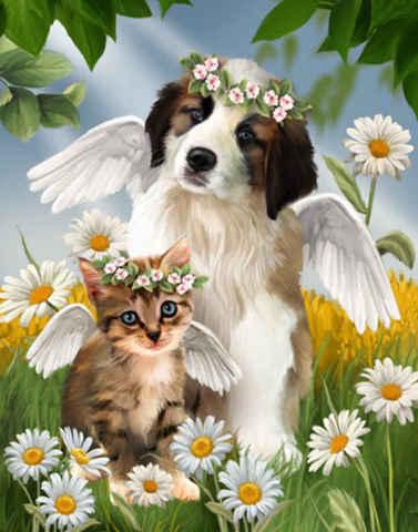 Алмазная Мозаика 40x50 Кошка и собака ангелы в ромашках