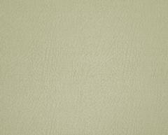 Искусственная кожа Easysan (Изисан) 2203