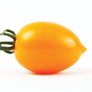 Томат Органза F1 семена томата индетерминантного (De Ruiter Seeds / Де Ройтер Сидс) Органза_1.jpg