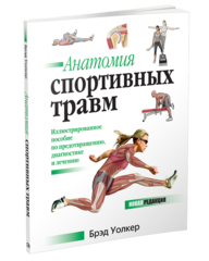 Анатомия спортивных травм