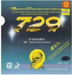 Friendship 729 Xi Enting