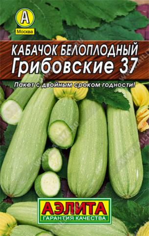 Кабачок белоплодный Грибовский 37 тип Лидер
