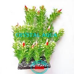 Растение Атман PP-044I, 30см