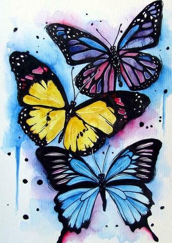 Картина раскраска по номерам 30x40 Три бабочки