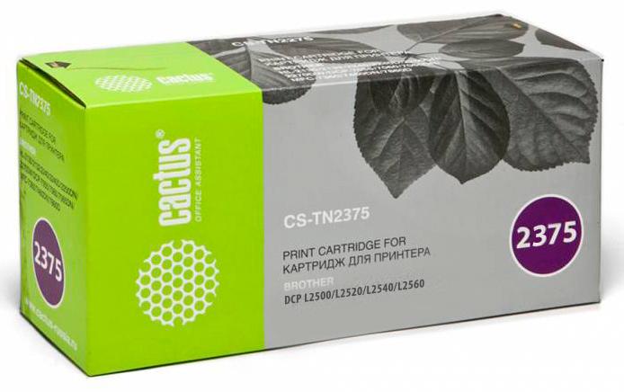 TN2375_Cactus