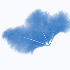 Перья Голубые, 10-15 см, 30 шт.