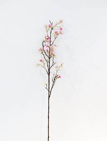 Ветка гептакодиума розовая