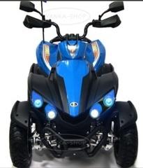 Электромобиль Квадроцикл P555PP 24V