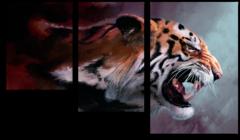 """Модульная картина """"Агрессивный тигр"""""""