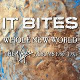 It Bites / Whole New World (4CD)