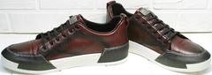 Повседневные кроссовки мужские для города Luciano Bellini C6401 MC Bordo.