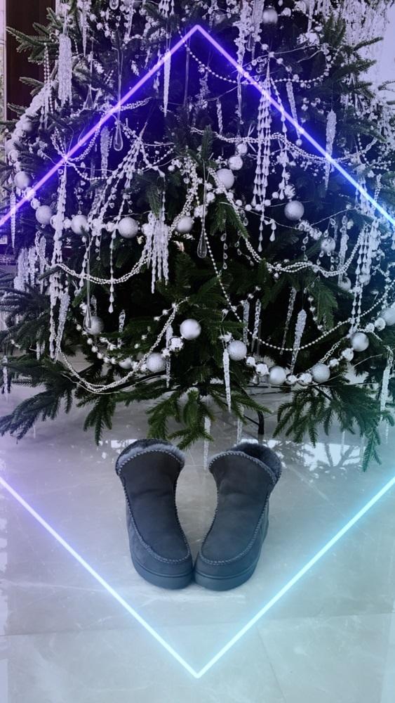Сникеры Шикари , Ballerina, Sneaker short (антрацит)