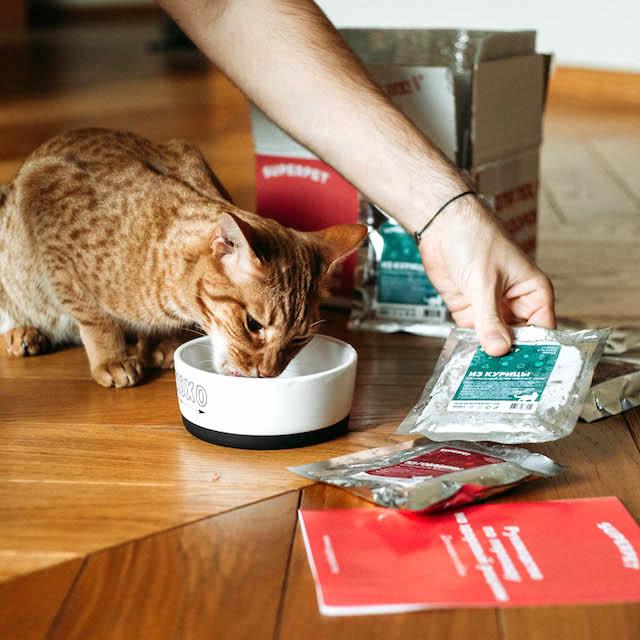 Корм из говядины SUPERPET для котиков