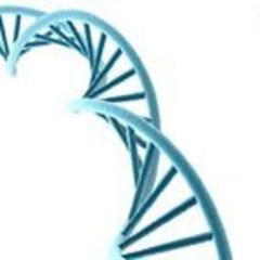 Профессиональный антивозрастной метод лечения для комбинированной и пигментированной кожи. Ardes