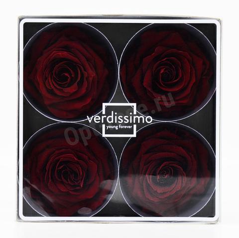 Стабилизированный Бутон Розы Verdissimo (Франция). Цвет Бордовый (Диаметр 7-8см)