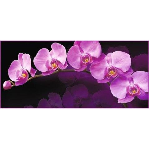 Зеркальная орхидея 294x134 см