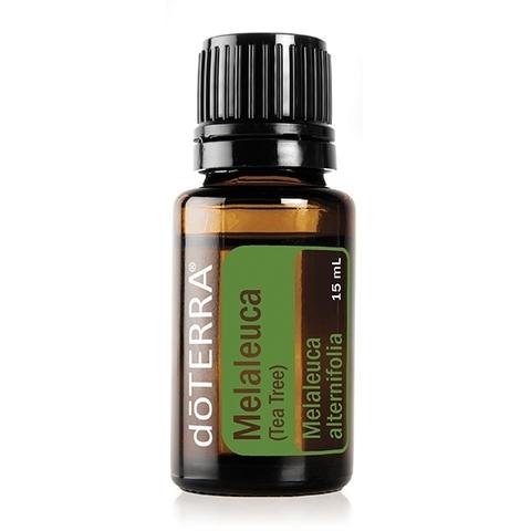 Чайное дерево (Melaleuca alternifolia), эфирное масло, 15 мл / MELALEUCA ESSENTIAL OIL
