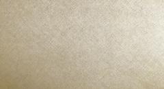Велюр Cartier beige (Картье бейж)