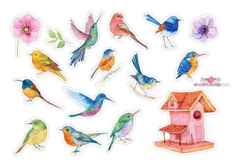 Печать на вафельной бумаге, Набор Птицы 7