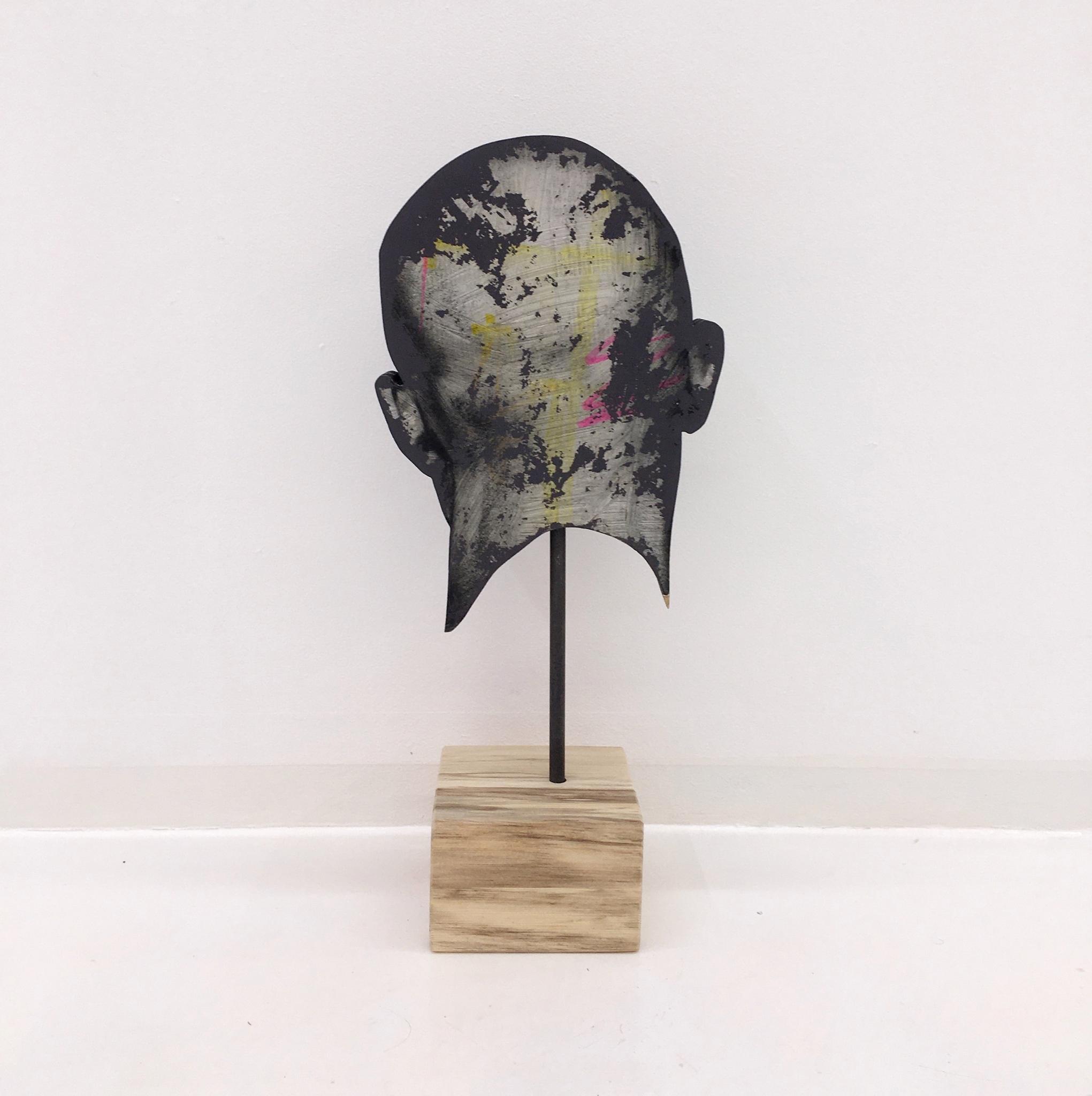 Объект «Голова» из серии «Проявленные»