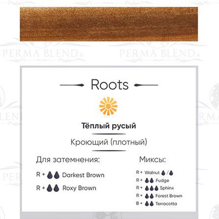 """ROOTS""  пигмент для бровей Permablend"