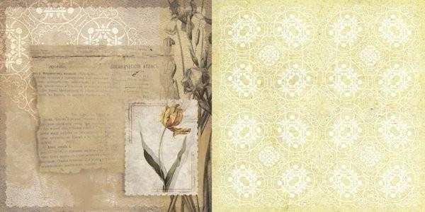Бумага для скрапбукинга Тюльпан