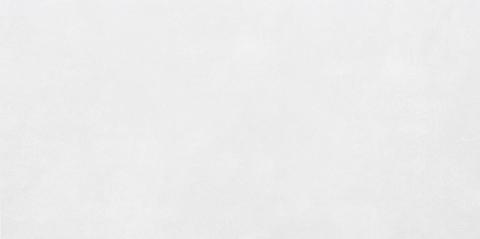 Плитка настенная Antre White WT9ANR00 500х249